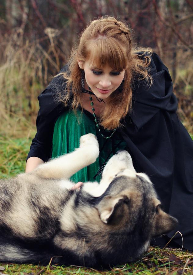 人类忠实的好伙伴 宠物摄影作品欣赏