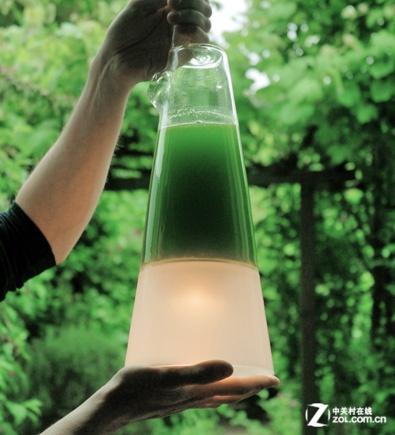 【高清图】 藻类发电 荷兰拉托恩灯应对全球变暖图1