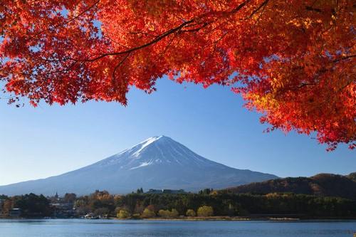 春夏秋冬富士山