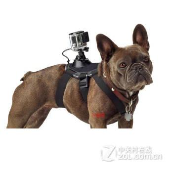 数码相机,数码相机大全,数码相机报价,最新数码相机