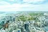 新西兰奥克兰塔看整个市区