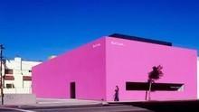 粉色系拍照