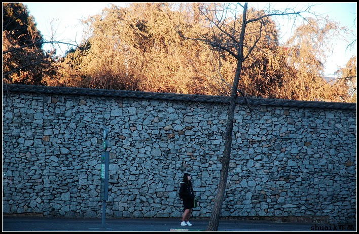 【高清图】 那一片韩流韩韵—韩国首尔街头随拍图4