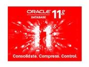 Oracle 11g 企业版
