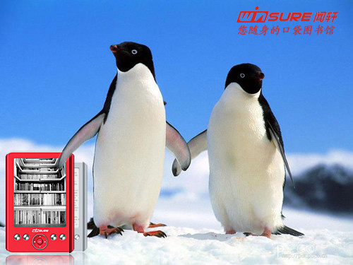 拒绝环保 五十年以后企鹅在哪里
