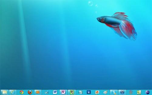 壁纸 海底 海底世界 海洋馆 水族馆 501_313