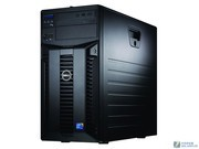 戴尔 PowerEdge T310(Xeon X3430/1GB/250GB)