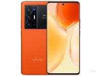 vivo X70 Pro+(12GB/256GB/全网通/5G版)